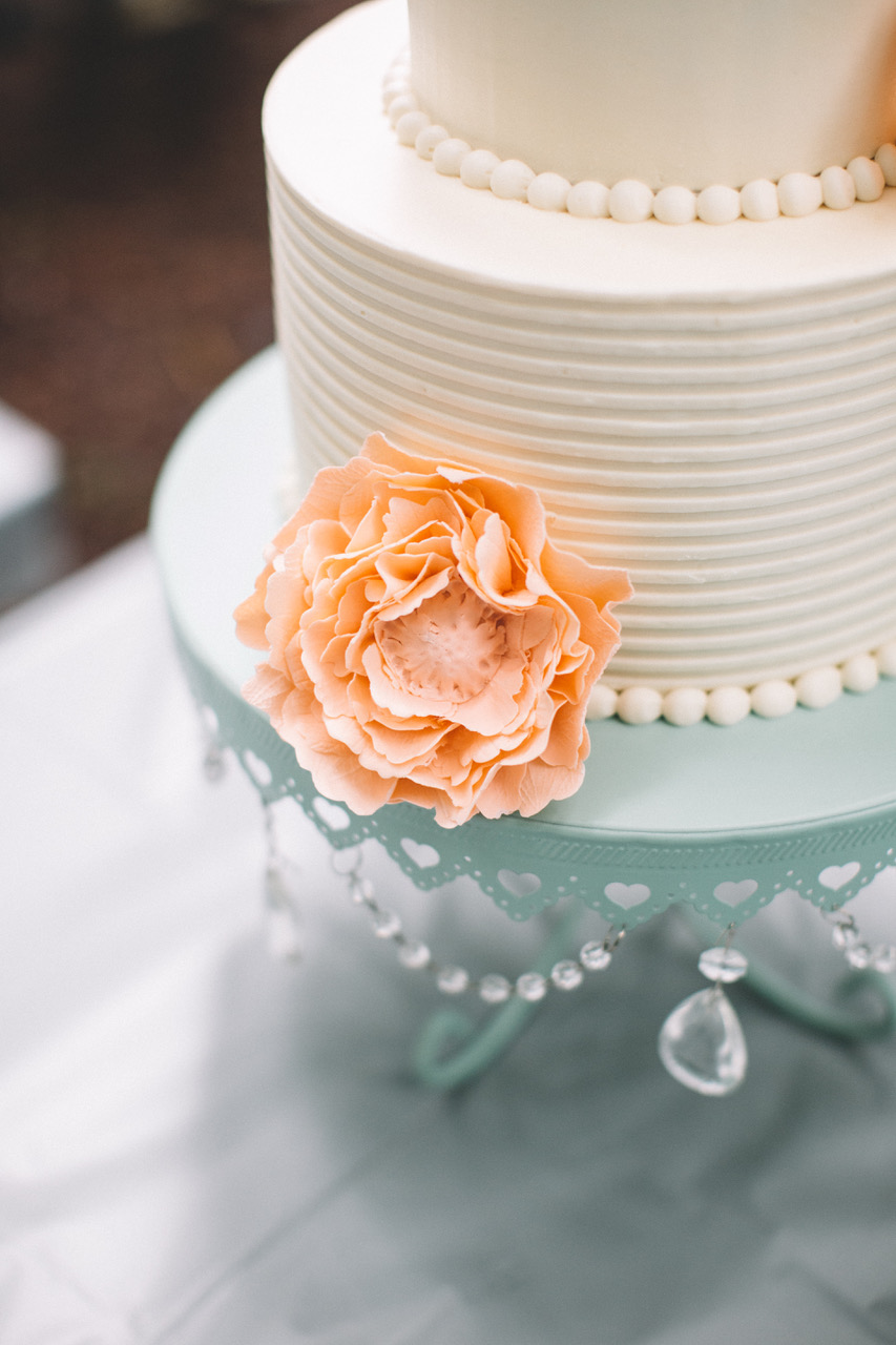 Custom boutique wedding cakes, cupcakes, cookies and dessert bars will bring your wedding theme to life.